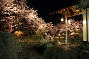 森の湯(露天・夜桜)